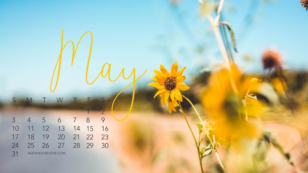 May 2020 Sunflower Desktop Background