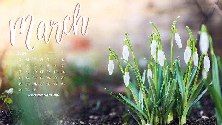 March Calendar Flower Background Desktop