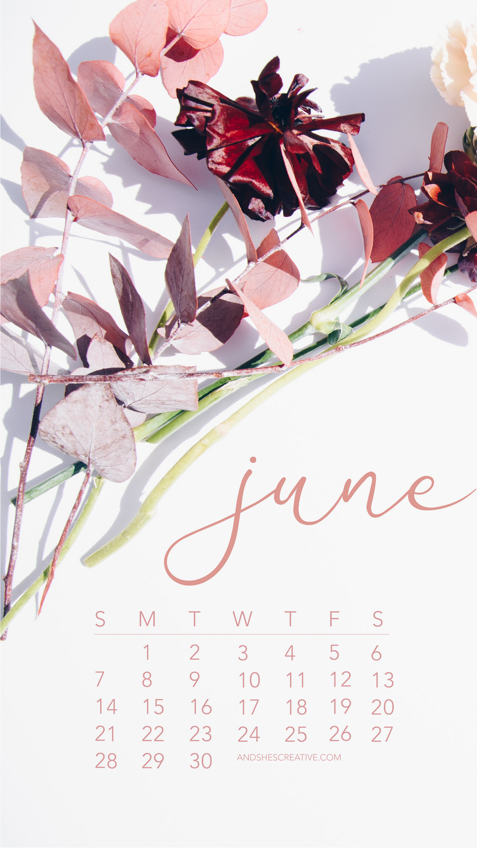 June 2020 Floral Calendar Mobile Backgro