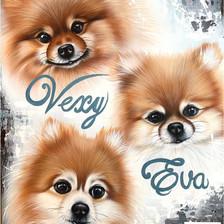 Vexy, Eva et Boun