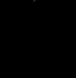 LSA Log noir avec baseline.png