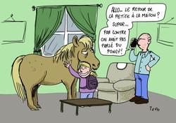 a poney