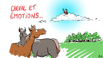 1cheval et emotions.jpg