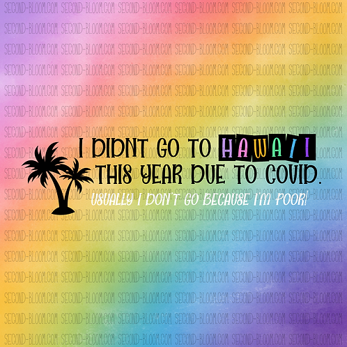 I Didn't Go to Hawaii (Rainbow Background)
