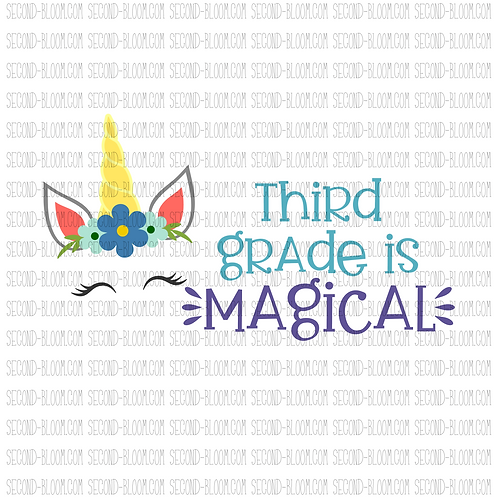 Third Grade is Magical