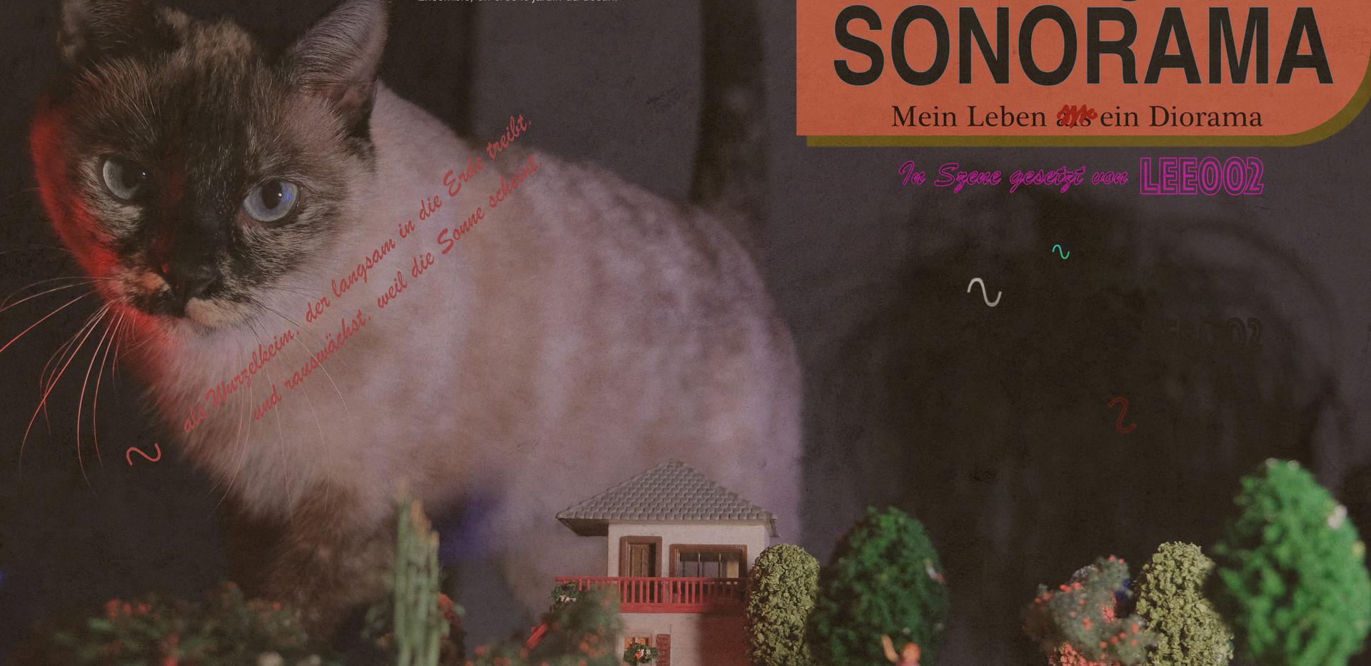 Meta Müller: sonorama. Mein Leben ein Diorama
