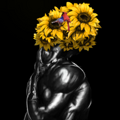 flowere1080-1.png