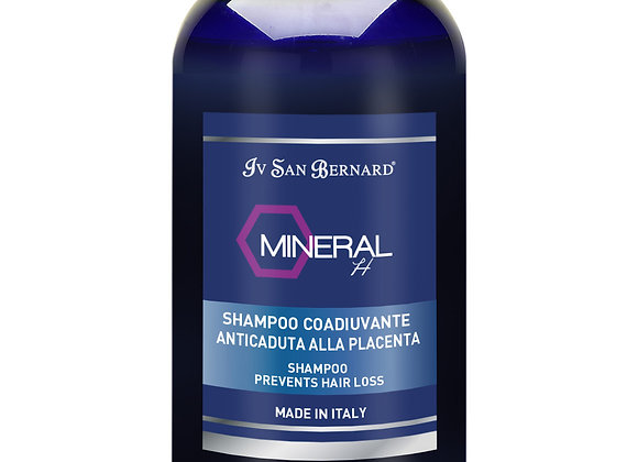 Shampoing Minéral H