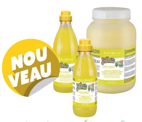 Shampoing Gingembre / Sureau