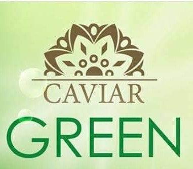 "Spray Green Caviar ""Luminance"""