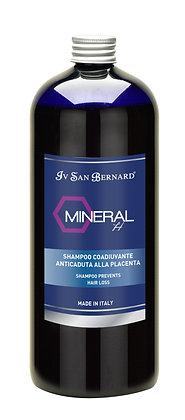 Shampoing Minéral H