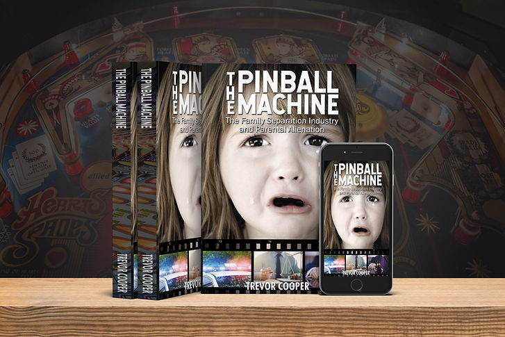ThePinballMachine_3D_CVR_set.jpg