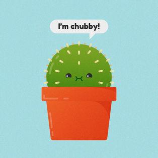Chubby Cactus