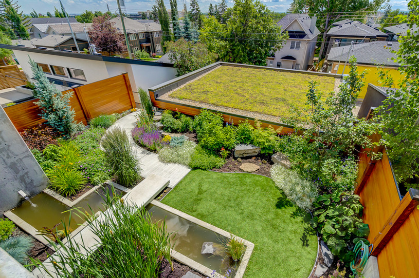 Back Yard Garden + Garage Green Roof