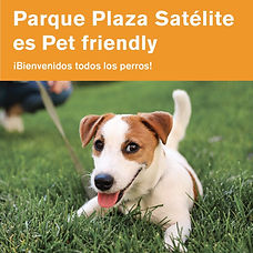 Plaza pet friendly.jpeg