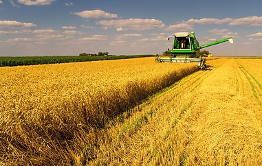 tiq-investment-opportunity-food-agricult