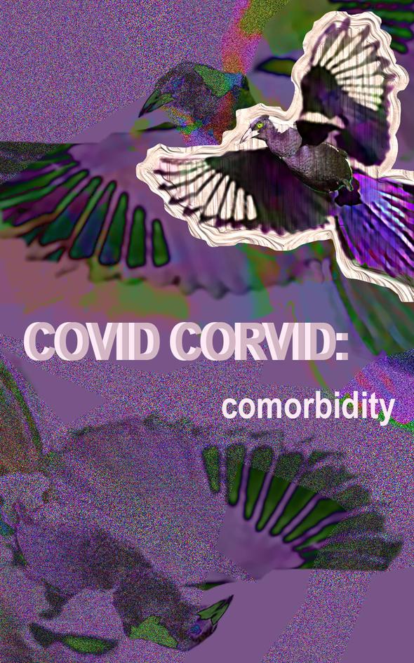 Covid Corvid