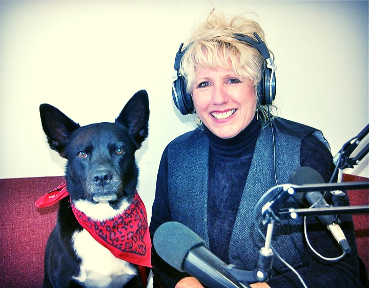 All Paws Pet Talk Radio Show