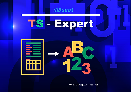 TS-Expert Home Screen.png