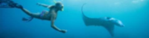 excursions à Khao lak snorkeling
