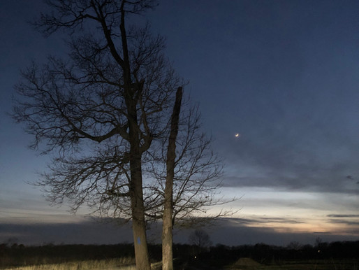 Twilight view.