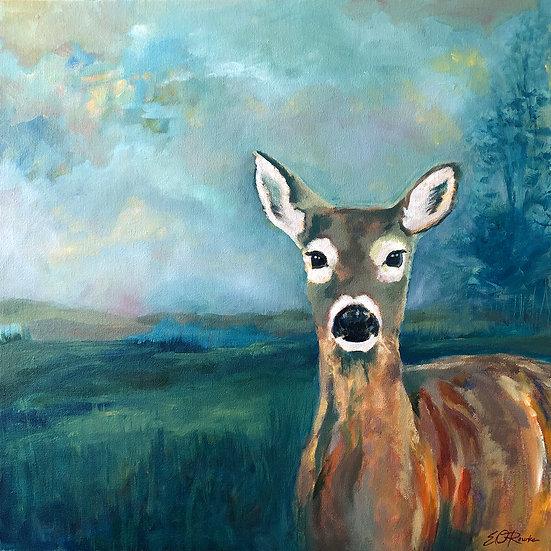"""Dusk Rise - oil on canvas, 20"""" x 20"""", $1450"""
