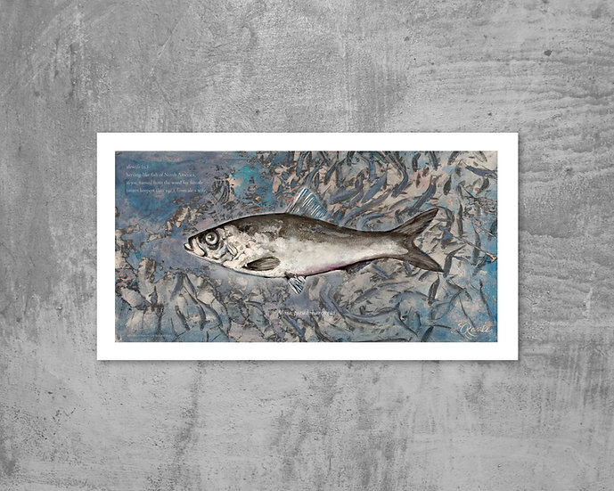 Alewife Limited Edition Print