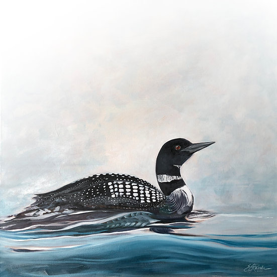 """Lone Loon - oil on canvas, 24"""" x 24"""", $1650"""