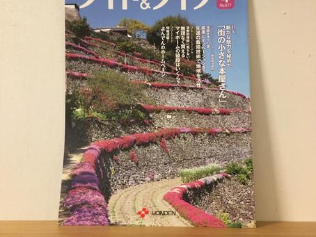お店の紹介:『四国電力 ライト&ライフno.677』