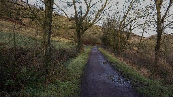 Thornhill Trail.jpeg