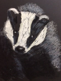 Badger pastel CA.JPG