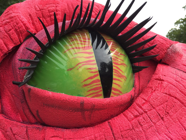 Dragon Puppet Eye Closeup