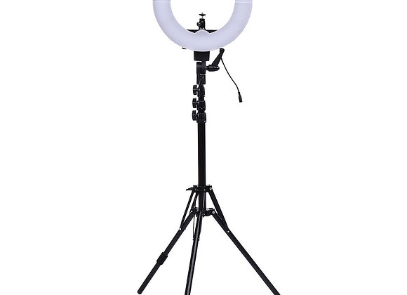"12"" LED SMD Ring Light with Plastic Color Filter Set"