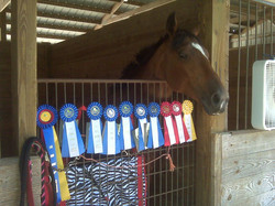 A student's (Caroline Ford)  horse, Mya, and their ribbons for the day.  SOOO proud of them!