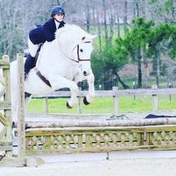 Perfekt jumping.jpg