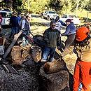 wood event 2020 02 01