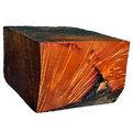 Methods of drying wood bowl blanks