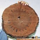 Warren Wise talks Wood Preparation
