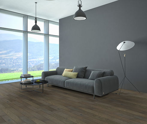 Grey Shadow Room Scene.jpg