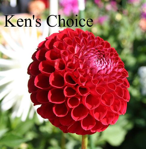 Ken's Choice