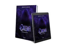enigma_wix.png