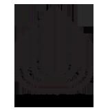 לוגו הכללית
