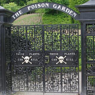 Alnwick Gardens - Harry Potter Galvanized Gates