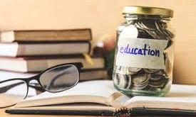 Much ado about school fees