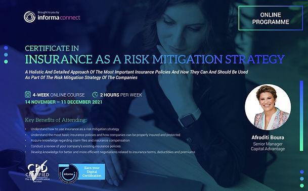 Insurance as a Risk Mitigation.JPG