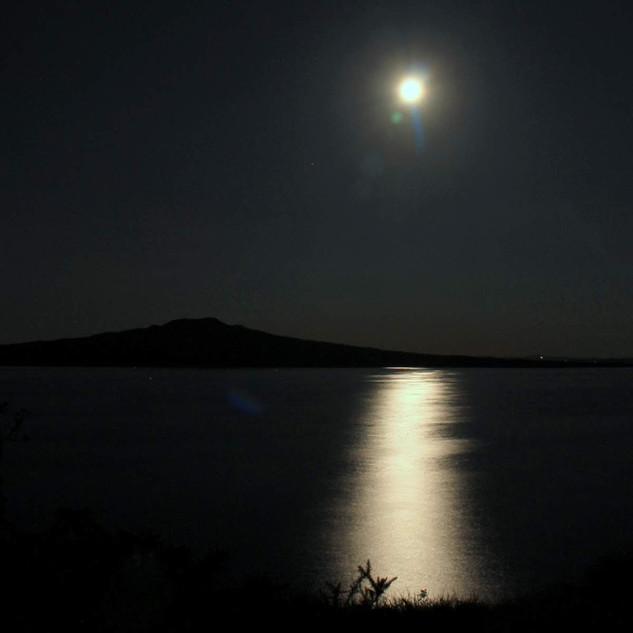 Shining Moonlight