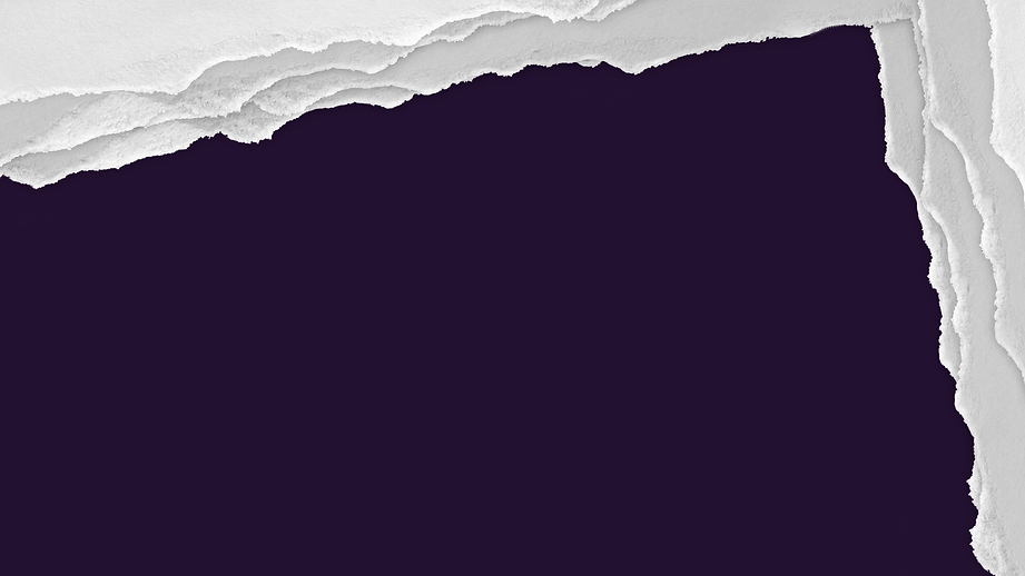 roxo-02.png