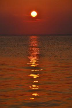 Sunset In Cherry Grove Fire Island