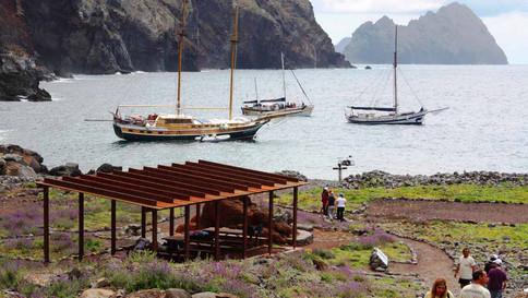 Conheça os passeios de barco em alto-mar na Ilha da Madeira
