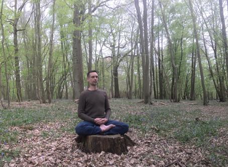 Quel but à la méditation ?